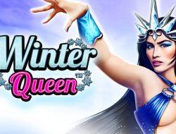 Игровой автомат Winter Queen
